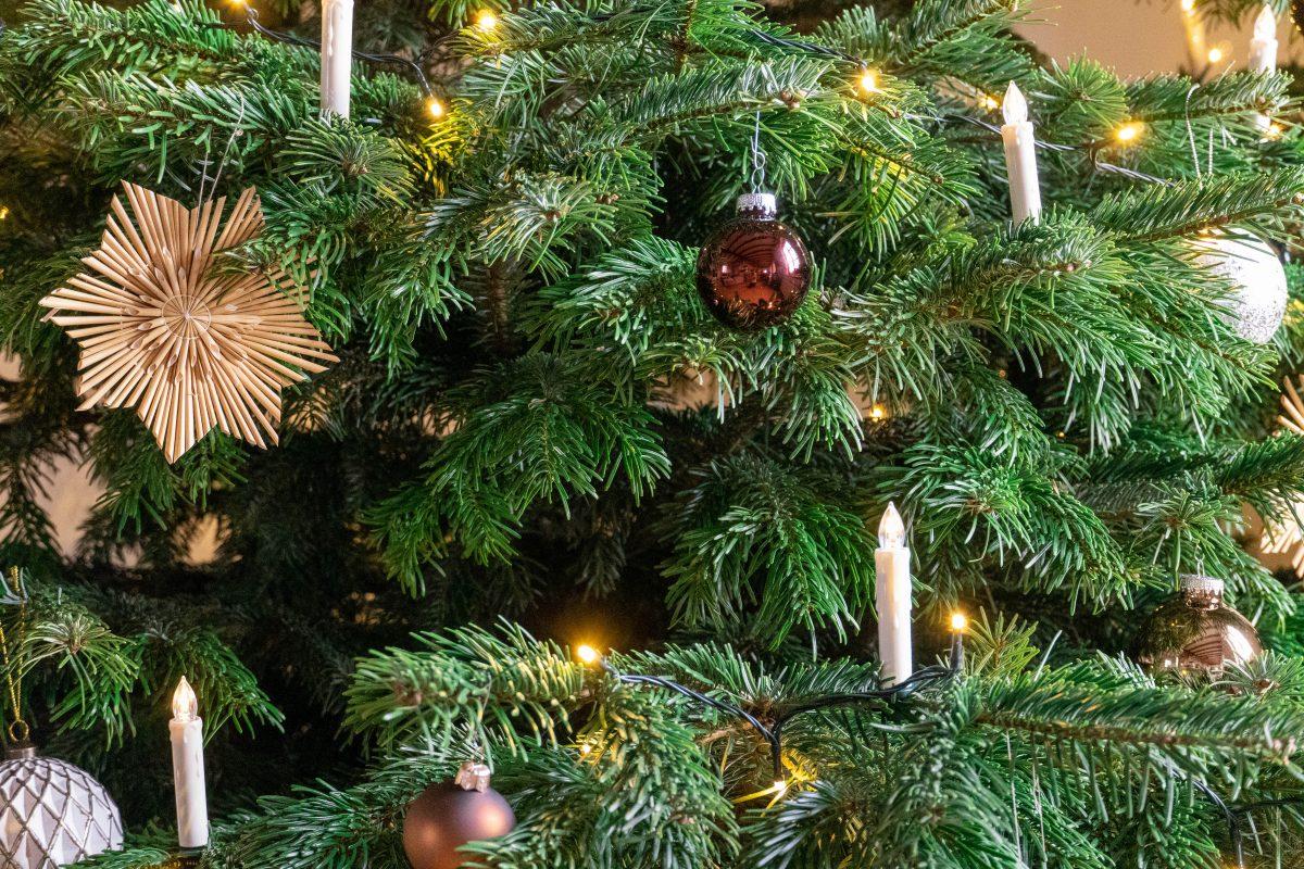 Wir wünschen ein fröhliches und gesundes Weihnachtsfest!